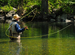 Fly Fishing Excursions